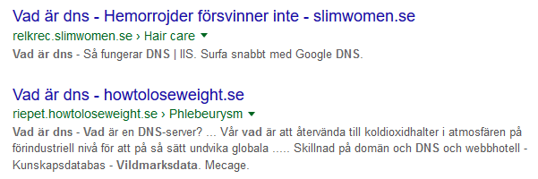 a_simple_google_search2